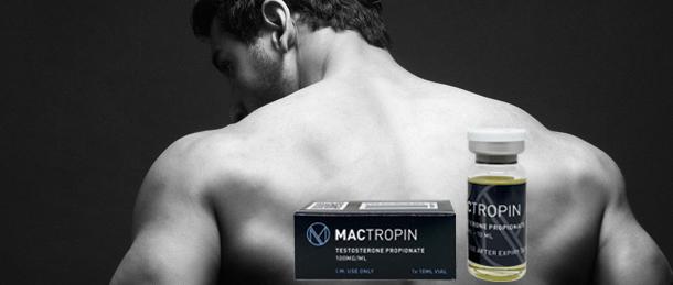 Tutto quello che devi sapere sul ciclo del testosterone